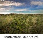 field   Shutterstock . vector #336775691