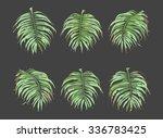 palm leaves vector set | Shutterstock .eps vector #336783425