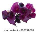 Bunch Of Fresh Violet Calla...