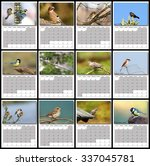 Garden Birds Calendar Year 2016 ...