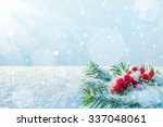Winter Background With Branche...
