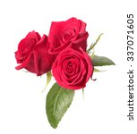 three red roses isolated on... | Shutterstock . vector #337071605