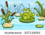 illustration of a cartoon frog...   Shutterstock .eps vector #337118501