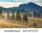 cold morning fog with hot sunrise in conifer forest in  mountains of Romania - stock photo