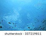 texture sea water underwater | Shutterstock . vector #337219811
