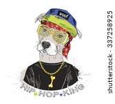 pit bull dressed up in hip hop... | Shutterstock .eps vector #337258925