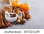 homemade pumpkin pie spice in a ... | Shutterstock . vector #337321139