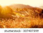 majestic field in the sunlight. ... | Shutterstock . vector #337407359