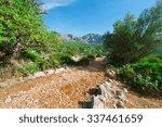 winding dirt road in the... | Shutterstock . vector #337461659