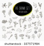 hand sketched a large... | Shutterstock . vector #337571984