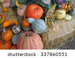 Photo Of Pumpkin Winter Squash...