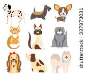 collection of cats and dogs of... | Shutterstock .eps vector #337873031