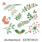 red berries  fir and leaves.... | Shutterstock .eps vector #337873415