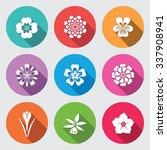 Flower Set. Camomile  Daisy ...