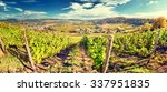 panoramic landscape with autumn ... | Shutterstock . vector #337951835