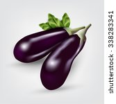 Two Blue Eggplant. Vector...