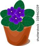 african violet flower in pot | Shutterstock .eps vector #338462339