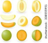 vector illustration of melons | Shutterstock .eps vector #338555951