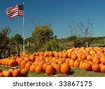 A Pumpkin Farm With A...