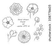 Hand Drawn Ink Flower Sketch...