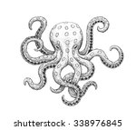 blue ringed octopus    classic... | Shutterstock .eps vector #338976845