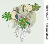 australia. vector illustration. | Shutterstock .eps vector #339011381