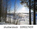 The Winter Landscape. Snowy...