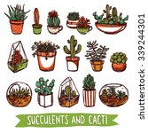 succulents and cacti color... | Shutterstock .eps vector #339244301