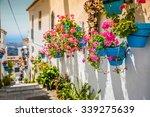 Picturesque Street Of Mijas...
