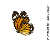 Stock photo common tiger butterfly danaus genutia monarch butterfly isolated on white background 339290684