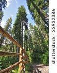 trekking in val di fassa  alps  ... | Shutterstock . vector #33932386