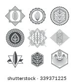 set of graphical natural labels ... | Shutterstock .eps vector #339371225