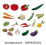 different vegetables isolated... | Shutterstock .eps vector #339420101