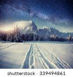 Starry Sky In Winter Snowy...