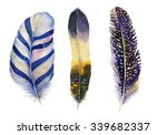 hand drawn watercolor vibrant... | Shutterstock . vector #339682337