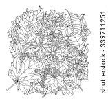 Forest Maple  Oak  Linden Leaf...