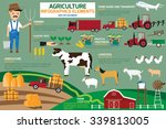 design of agriculture and... | Shutterstock .eps vector #339813005