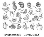 vector hand drawn fruit sketch... | Shutterstock .eps vector #339829565