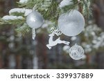 Winter Pine Tree Branches With...