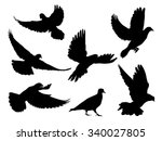 silhouettes of doves in many... | Shutterstock .eps vector #340027805