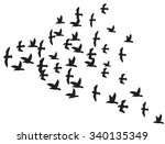 a flock of flying birds  | Shutterstock .eps vector #340135349