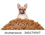Stock photo hungry french bulldog dog behind a big mound of food isolated on white background licking with 340174547
