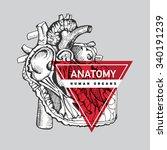 human organ heart . hand... | Shutterstock .eps vector #340191239