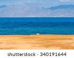 dahab  sinai peninsula  egypt ... | Shutterstock . vector #340191644