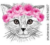cat | Shutterstock .eps vector #340196837