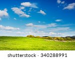 Sheep Grazing In The Green Of...