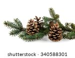 Branch Of Fir Tree And Cone On...