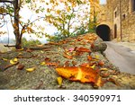entrance road to the castle in... | Shutterstock . vector #340590971