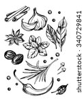 hand drawn set of herbs and...   Shutterstock .eps vector #340729841
