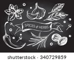 hand drawn set of herbs and... | Shutterstock .eps vector #340729859